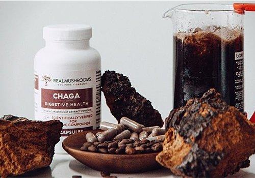 Chaga Antioxidants