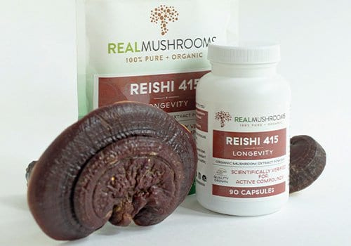 Reishi stimulant free pre workout