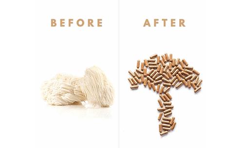 Lion's Mane Mushroom for Stimulant Free Pre-Workout
