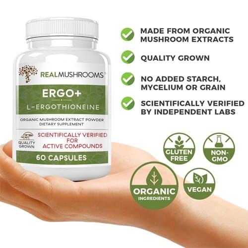 Ergothioneine supplement facts