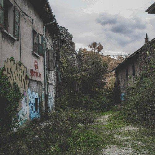 Mycoremediation of Urban Pollution